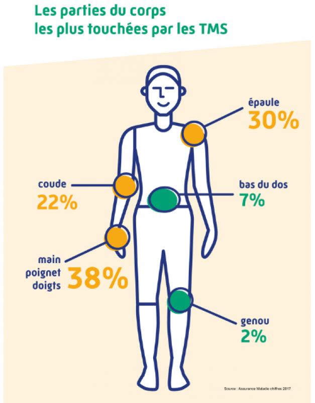 Les parties du corps les plus touchées par les TMS
